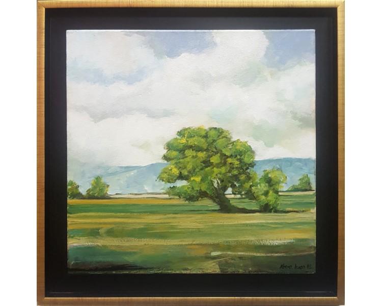 Kovacevic - drvo u polju