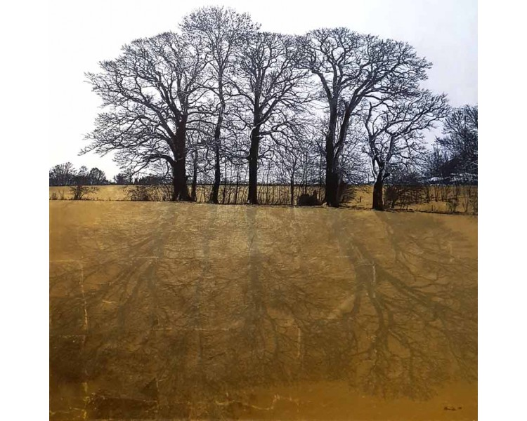 kova - drveće 02