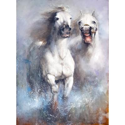 Šadić 03 - dva bijela konja